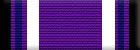 Purple Heart (Level 1)
