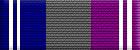 Departmental Service Badge: Support (Level 1)